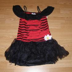Costum carnaval serbare animal buburuza pentru copii de 12-13-14 ani - Costum Halloween, Marime: Masura unica, Culoare: Din imagine