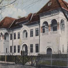 RAMNICU VALCEA, SERVICIUL TEHNIC - Carte Postala Oltenia dupa 1918, Necirculata, Printata