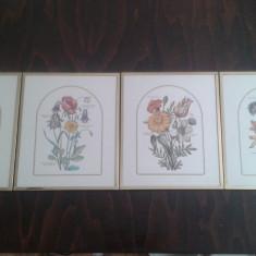 Tablou Art & Decor Vintage set patru piese - Pictor strain, Flori, Cerneala, Realism