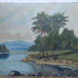 Pictura veche nesemnata, Natura statica, Ulei, Miniatura