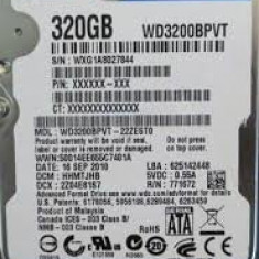 HDD SATA LAPTOP 2.5` WD 320 Gb, garantie 6 luni. - HDD laptop Western Digital, 300-499 GB, Rotatii: 5400, SATA2, 8 MB