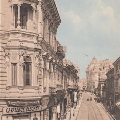 BUCURESTI, STRADA CAROL, HOTEL REGINA, MAGAZIN ''CAVALERUL ELEGANT'' - Carte Postala Muntenia 1904-1918, Necirculata, Printata