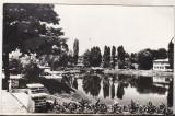 Bnk cp Campina - Lacul din parc - necirculata, Printata