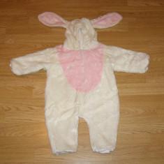 Costum carnaval serbare animal iepuras pentru copii de 3-6-9 luni - Costum Halloween, Marime: Masura unica, Culoare: Din imagine