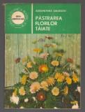 (C6969) ALEXANDRINA AMARIUTEI - PASTRAREA FLORILOR TAIATE