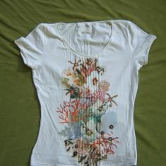 Bluza dama superba MARC CAIN marimea 3, M, Marime: M, Culoare: Din imagine, Maneca scurta