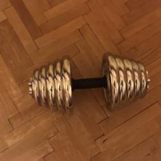 Gantera reglabila 20 kg - discuri metalice cromate