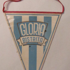 PVM - Fanion CS GLORIA BISTRITA
