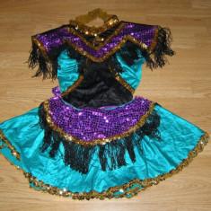 Costum carnaval serbare rochie dans balet pentru copii de 10-11-12 ani - Costum Halloween, Marime: Masura unica, Culoare: Din imagine