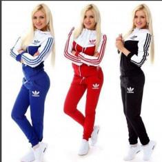 Trening adidas dama new young model nou 2016 - Trening dama Adidas, Marime: M, L, XL, XXL, Culoare: Albastru, Bleumarin, Negru, Rosu, Bumbac