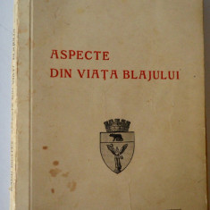 Aspecte din viata Blajului - Radu Brates - Istorie