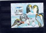 Guinea - Bissau - pinguins