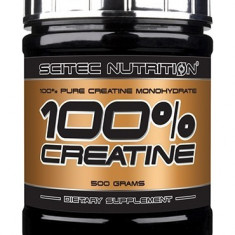 100% creatine monohydrate, 500g - Supliment sport