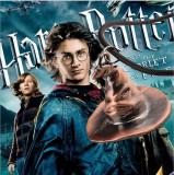 Pandantiv / Medalion / Colier / Lant Harry Potter Palarie Hogwarts Model 2016