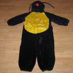Costum carnaval serbare animal buburuza pentru copii de 7-8 ani - Costum Halloween, Marime: Masura unica, Culoare: Din imagine