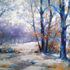 tablou picturå - peisaj iarnå