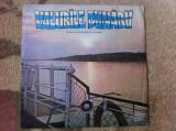 Muzica reprezentativa a armatei Valurile dunarii STM EXE 01089 disc vinyl lp, VINIL, electrecord