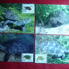 Set 4 Maxime - Fauna -Broaste Testoase- 1999 Bulgaria
