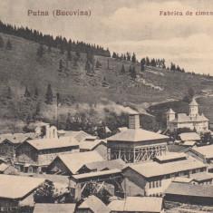 PUTNA( BUCOVINA), FABRICA DE CIMENT SI BISERICA, LIBRARIA NOUA DR. BRAUNSTEIN - Carte Postala Moldova dupa 1918, Necirculata, Printata