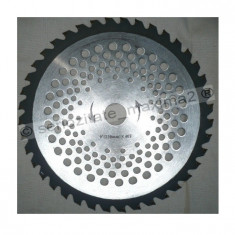 Disc vidia motocoasa trimmer cu int 24, 5mm - Motocositoare
