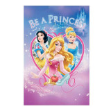 COVOR DISNEY BE A PRINCES 120X160CM