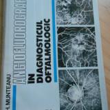 GH. MUNTEANU-ANGIOFLUOROGRAFIA IN DIAGNOSTICUL OFTALMOLOGIC - 1981
