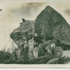 WW1 OFITERI SI SOLDATI ARMATA GERMANA FRONTUL DE EST GRANITA ROMANIA-RUSIA, Germania, Circulata, Printata