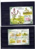 Sao Tome  - flora medicina, Natura, Africa