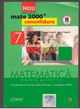 (C7421) MATEMATICA, ALGEBRA, GEOMETRIE, CLASA A 7-A - ANTON NEGRILA, PARTEA II
