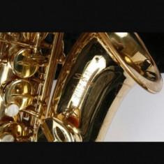 Saxofon alto Stagg