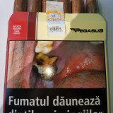 Tutun pegasus 500gr pentru injectat tuburi