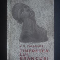 V. G. PALEOLOG - TINERETEA LUI BRANCUSI - Carte sculptura