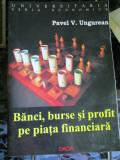Banci, burse si profit pe piata financiara - Pavel Ungurean, Alta editura