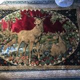 Carpeta Veche cu Cerbi