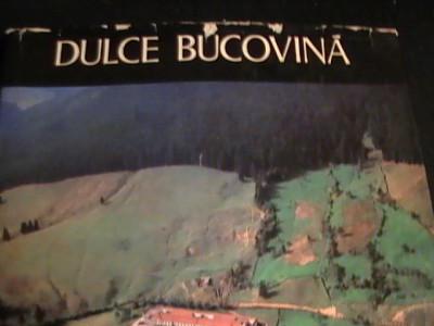 DULCE BUCOVINA-ION MICLEA-450 PG- FORMAT A 3- foto