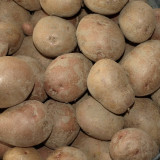 Cartofi samanta rosii - Legume
