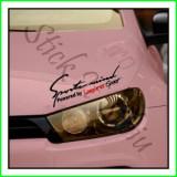 Sticker Far-Sports Mind-Renault Laguna-Model 1_Tuning Auto_Cod: FAR-015_Di