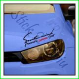 Sticker Far-Sports Mind-Dacia_Tuning Auto_Cod: FAR-016_Dim: 25 cm. x 9.2 cm.