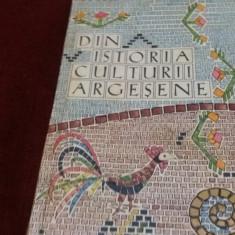 AUGUSTIN Z N POP - DIN ISTORIA CULTURII ARGESENE