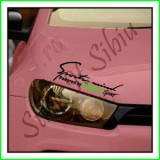 Sticker Far-Sports Mind-Renault Megane_Tuning Auto_Cod: FAR-009_Dim: 25 cm