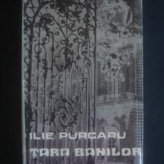 ILIE PURCARU - TARA BANILOR, Alta editura
