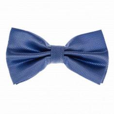 Papion albastru elegant barbati - Papion Barbati