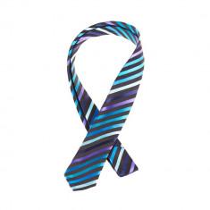 Cravata ingusta neagra albastra