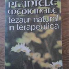 Plantele Medicinale Tezaur Natural In Terapeutica - Stefan Mocanu Dumitru Raducanu, 395107 - Carte Medicina alternativa