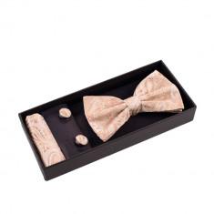Papion auriu elegant set - Papion Barbati