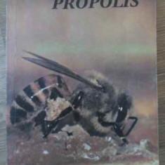 Din Tainele Stupului Propolis - Necunoscut, 395081 - Carti Agronomie