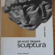 Pe Scurt Despre Sculptura - Adina Nanu, 395135 - Album Arta
