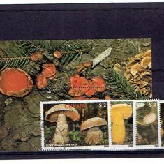 Guyana 1988 ciuperci stampilata, Natura, America Centrala si de Sud