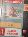 Algebra / Geometrie Clasa a VIII a de Anton si Maria Negrila