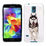 Husa Samsung Galaxy S5 G900 G901 Plus G903 Neo Silicon Gel Tpu Model Husky